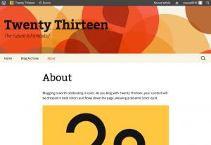 About   Twenty Thirteen